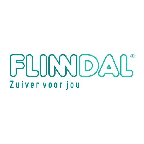 Flinndal - Digital Strategy