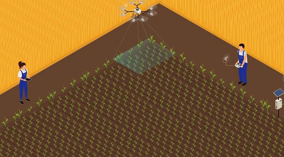 Smart Farming Animation
