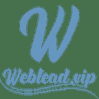 weblead.vip logo