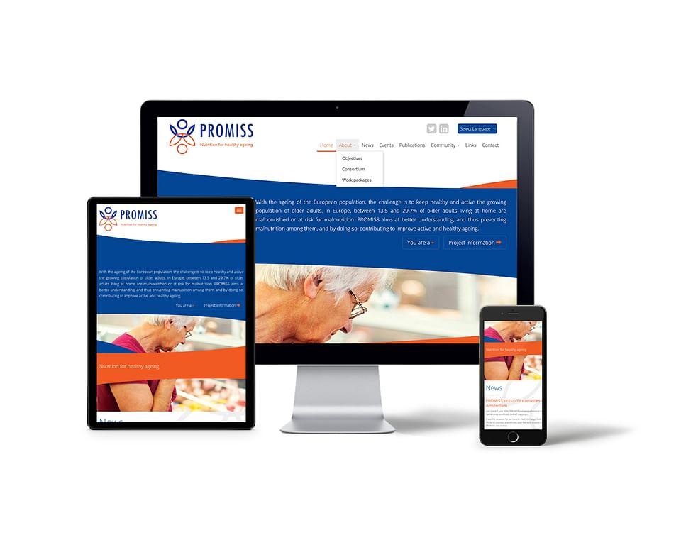 PROMISS I Website